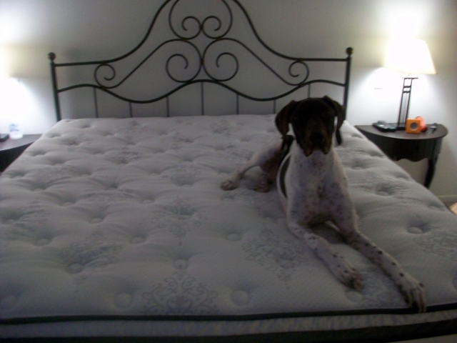 Karl's bed