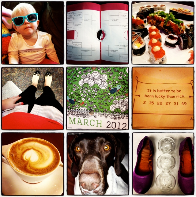 My week in photos 2/27-3/2