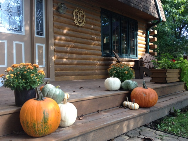 Fall frontsteps 2015