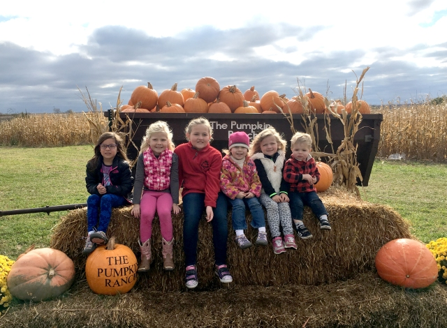 Branstad Fam Pumpkin Ranch