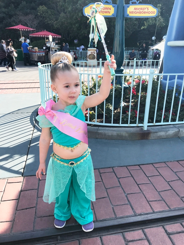 Disneyland2018_18