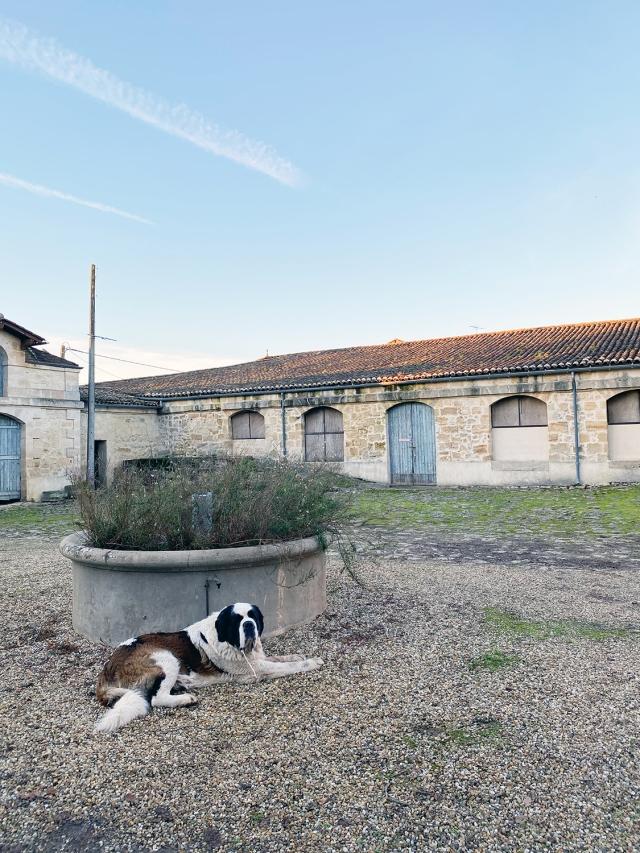 Bordeaux2019_02